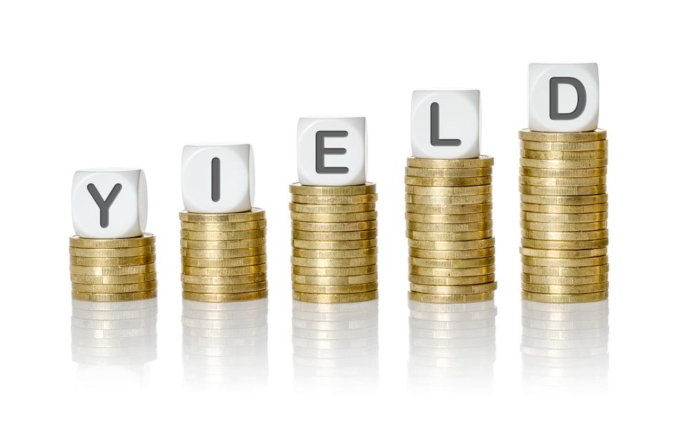 Yield - jak obliczyć zysk w zakładach bukmacherskich?
